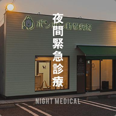 夜間診療,NIGHT MEDICAL